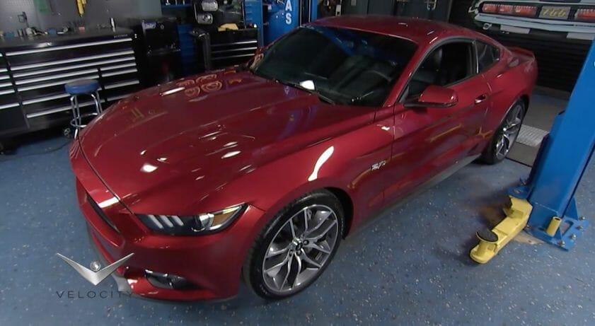 Dang' Mustang